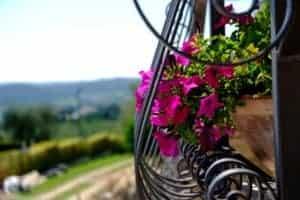 Gesatltung von Balkon und Terrasse gestalten