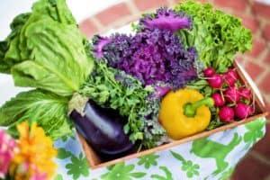 Diese Gemüsepflanzen eignen sich gut für die Balkonzüchtung
