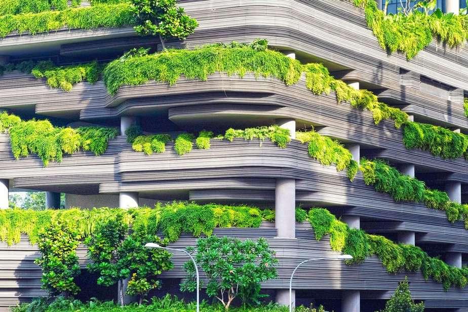 Pflanzen auf dem Balkon - es ist kein Problem. Nur welche ist die Frage!