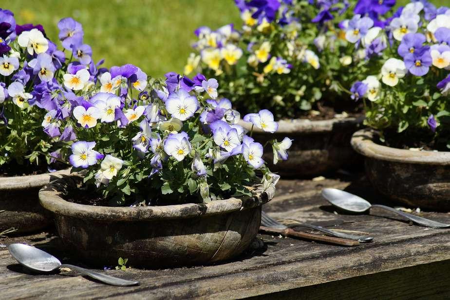 9 wichtige Dinge im Garten wie bspw. ein Pflanztisch